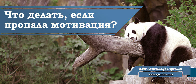 пропала мотивация панда